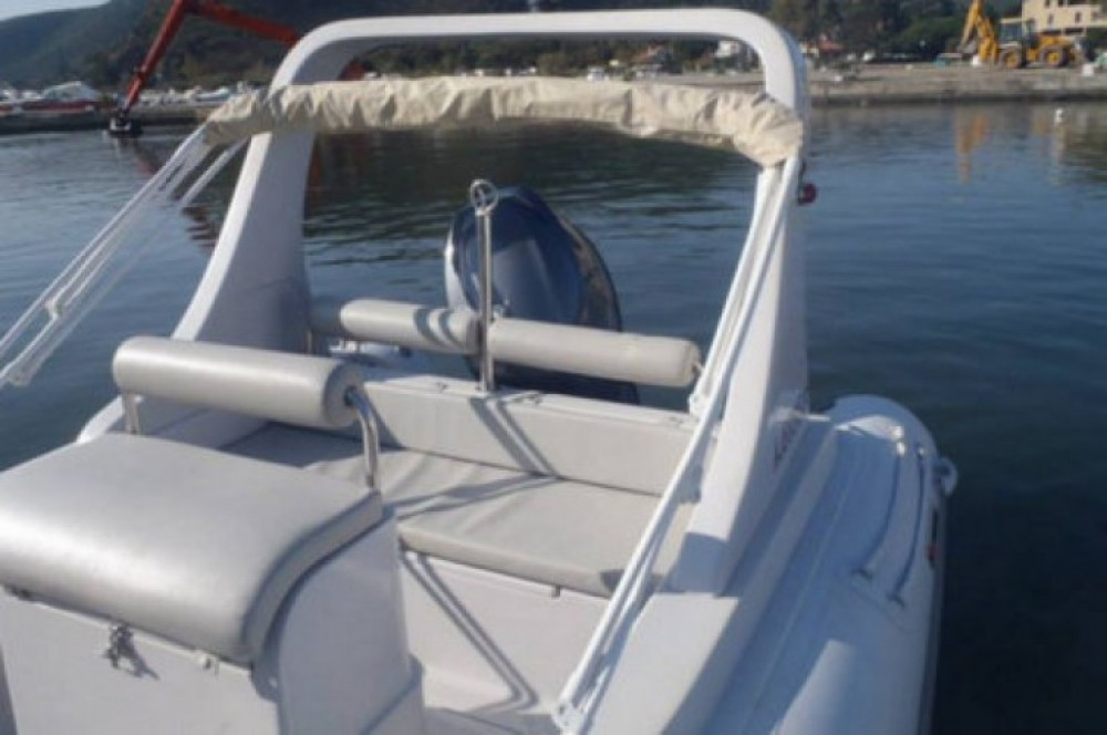 Rental RIB 3D Tender with a permit