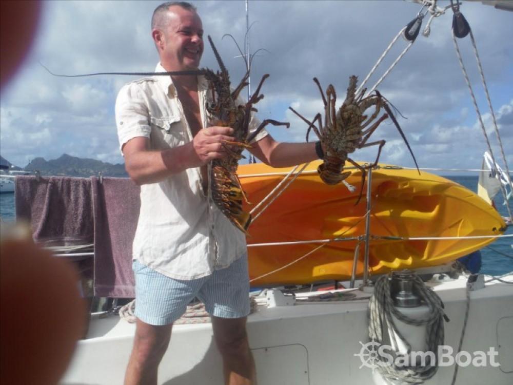 Rental yacht Le Marin - Catana Catana 411 on SamBoat