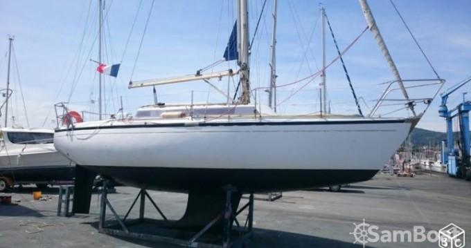 Boat rental Hendaye cheap Safari
