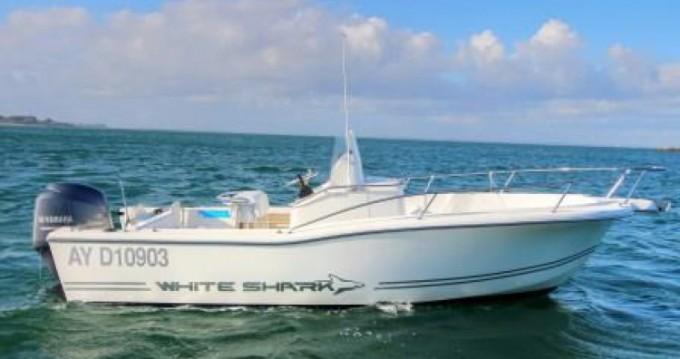 Boat rental Port-Haliguen cheap White Shark 205