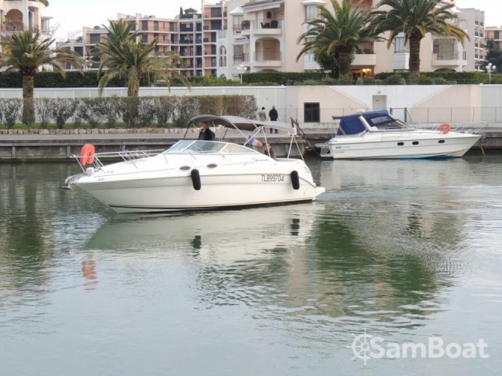 Boat rental Mandelieu-la-Napoule cheap Sea Ray 260 Sundancer