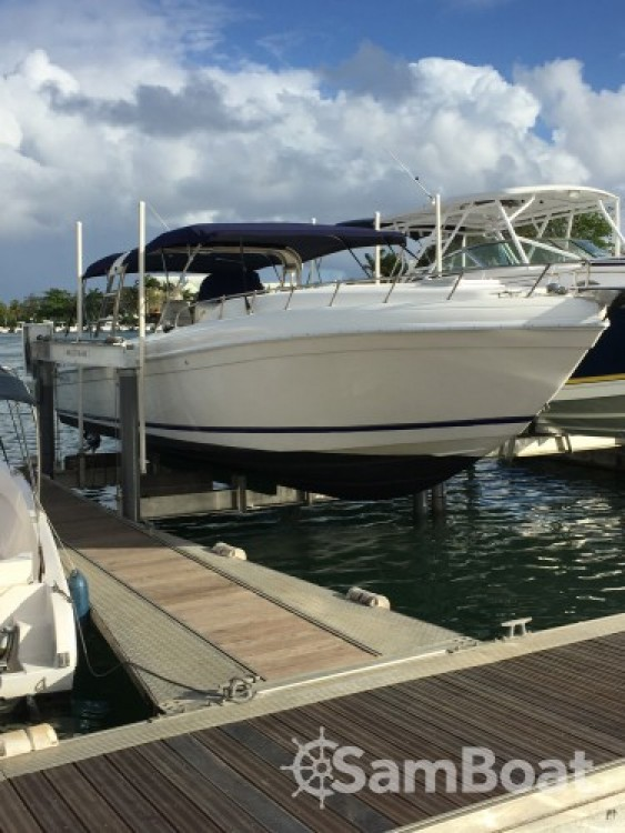 Forboat 37 PIEDS between personal and professional