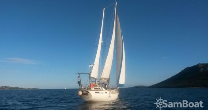 Boat rental Alpha-Yatch CLIPPER 40 in Porto-Vecchio on Samboat
