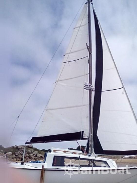 Boat rental Trégastel cheap Bosco