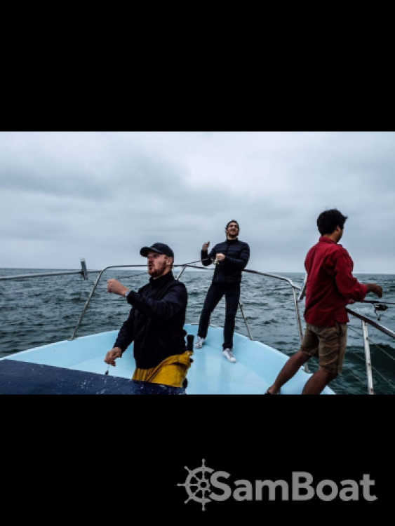 Hire Motorboat with or without skipper Guy Couach Lège-Cap-Ferret
