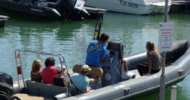 Rental RIB in La Rochelle - Narwhal Narwhal 900 Fast