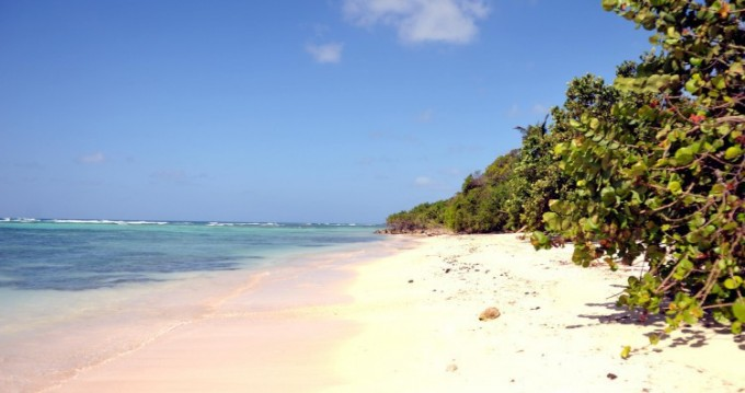 Rent a Lagoon Lagoon 380 Basse-Terre