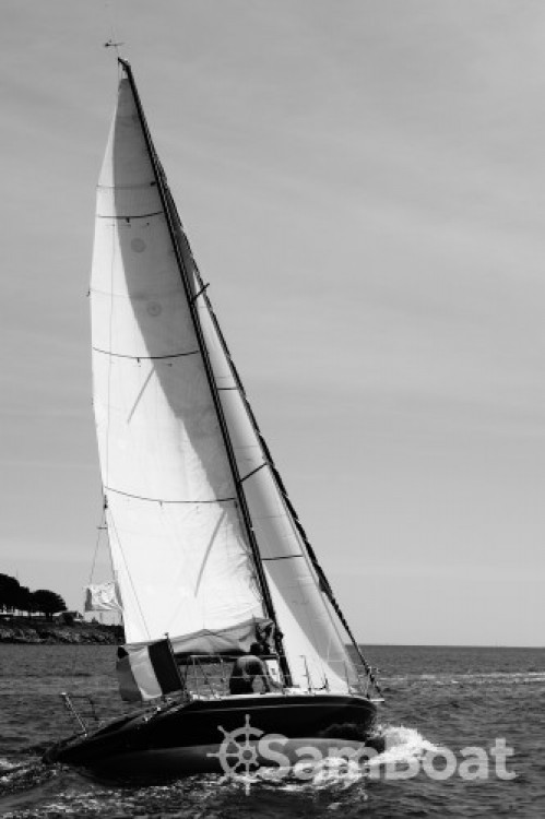 Waterline Day dream 300 between personal and professional La Trinité-sur-Mer