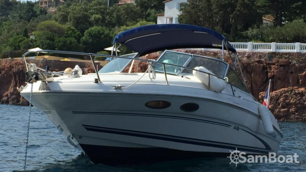 Boat rental Mandelieu-la-Napoule cheap Sea Ray 260