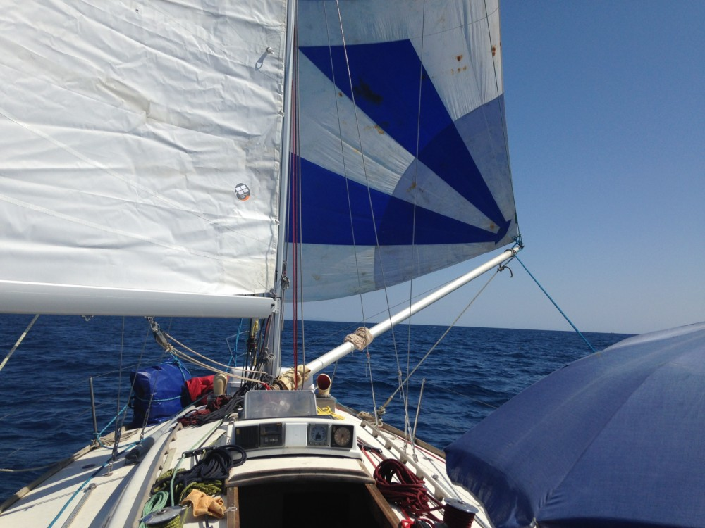 Boat rental  cheap 37
