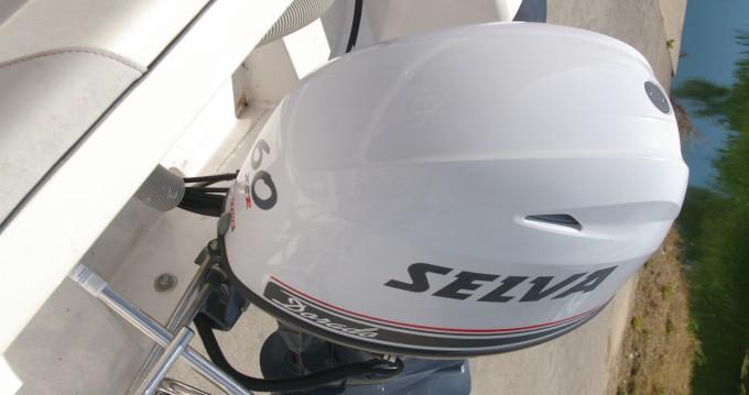 Rental RIB Selva with a permit