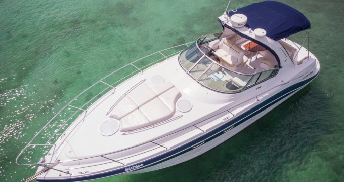 Hire Motorboat with or without skipper Four Winns Puerto Aventuras
