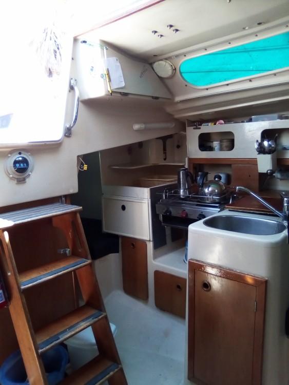 Boat rental Leucate cheap Aloa 29
