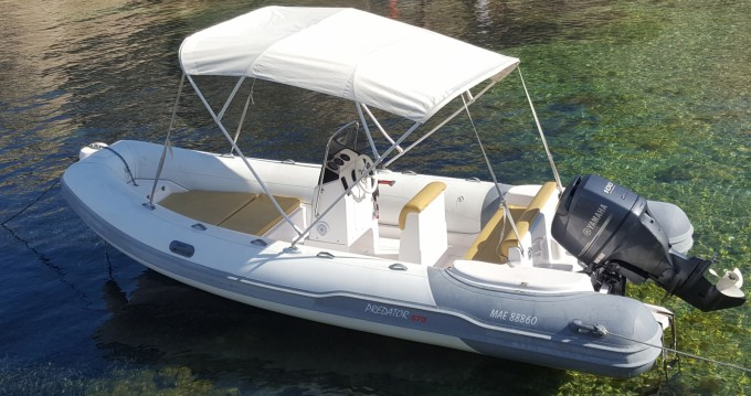 Rent a Italboats Predator 570 Old Port of Marseille