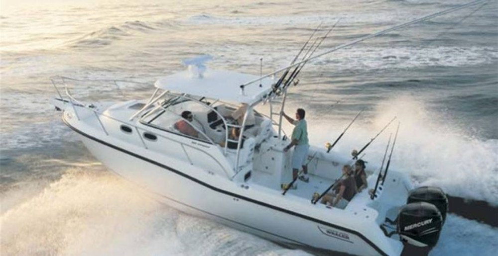 Motor boat for rent Marzamemi at the best price