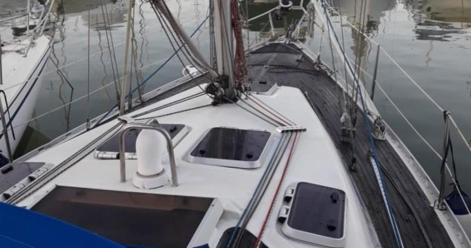 Boat rental Bavaria Bavaria 340 Caribic in Marina di Grosseto on Samboat