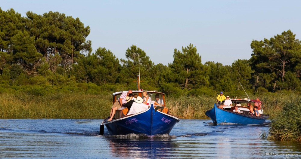 Hire Motor boat with or without skipper Pinasse Arcachon