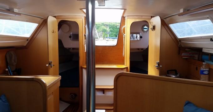 Rental yacht Arzon - Dufour Dufour 28 Mezzo on SamBoat