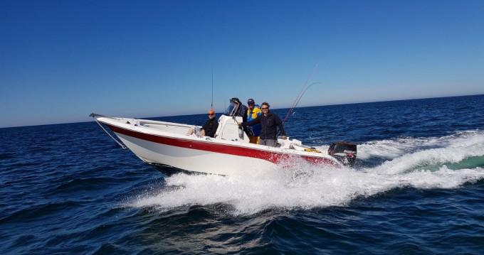 Rental yacht Port-Joinville - Sea-Fox 216 cc on SamBoat