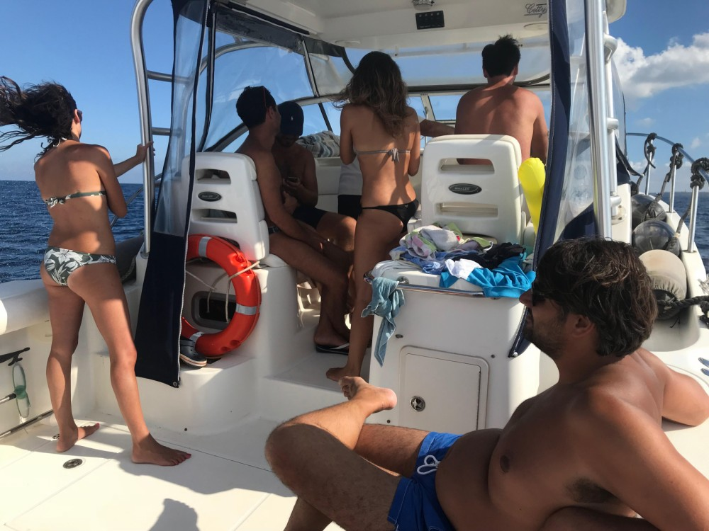 Boston Whaler Boston Whaler 305 Conquest between personal and professional Marzamemi