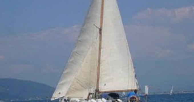Boat rental Wauquiez Gladiateur in Les Anses-d'Arlet on Samboat