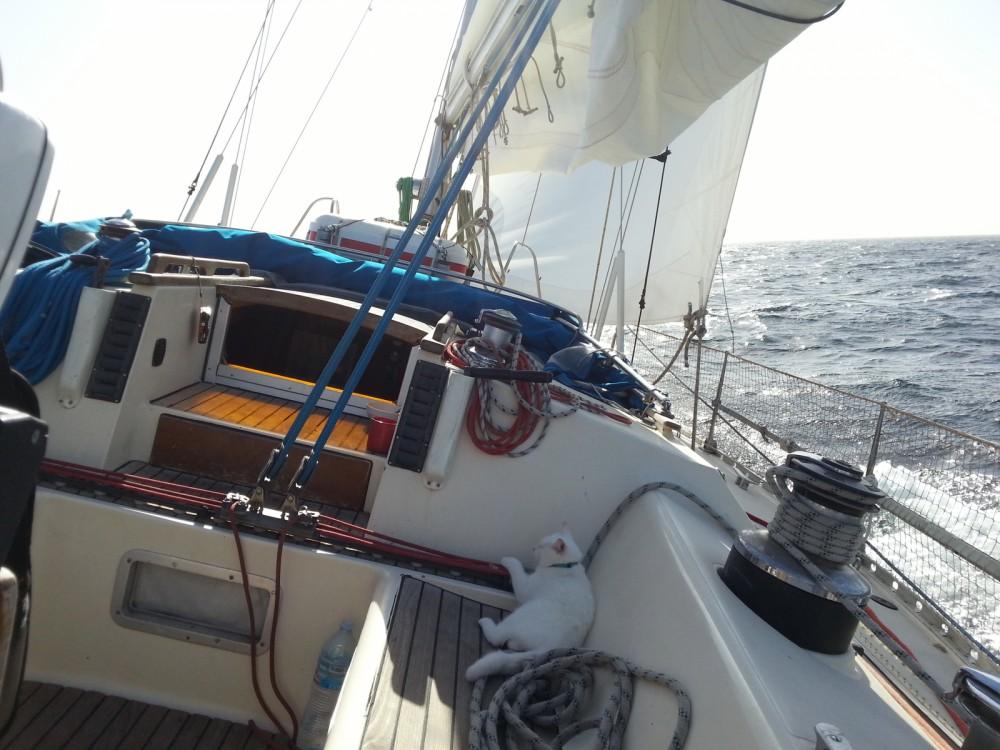 Rental yacht La Rochelle - Jeanneau Sun Kiss on SamBoat