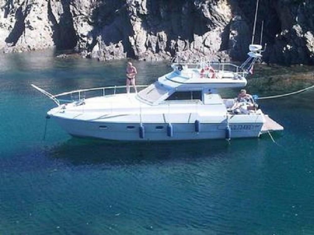 Boat rental Ferretti Altura 36 in Cannes on Samboat