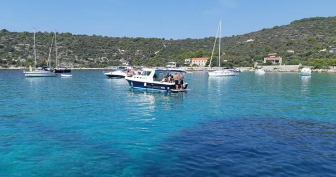 Rental Motorboat in Trogir - Albin Albin 28 Tournament Express