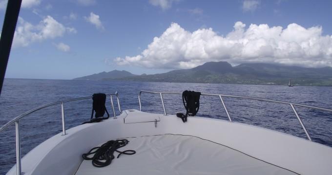 Boat rental Kelt White shark 226 in Basse-Terre on Samboat
