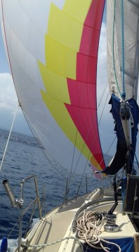 Hire Sailboat with or without skipper Dehler Falcone