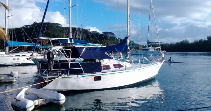 Boat rental Uturoa cheap Oxion 32