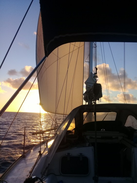 Sailboat for rent Uturoa at the best price