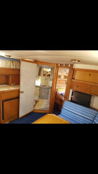 Boat rental Sealine sealine 328 open in Split on Samboat