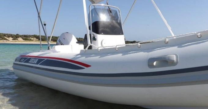 Rental yacht Ibiza Town - Selva Selva D470 AUXILIAR O TENDER on SamBoat