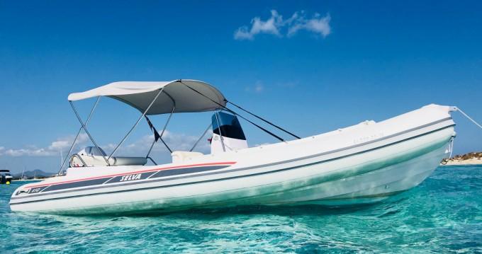 Boat rental Selva DS Evolution in Ibiza Town on Samboat