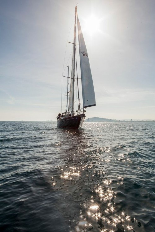 Hire Sailboat with or without skipper Irwin Barcelona
