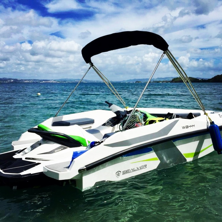 Hire Jet Ski with or without skipper Sealver Les Trois-Îlets