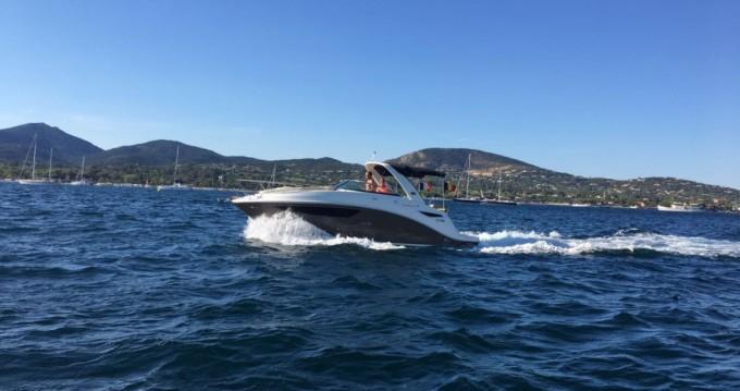 Boat rental Port Grimaud cheap Sea Ray 265 Sundancer