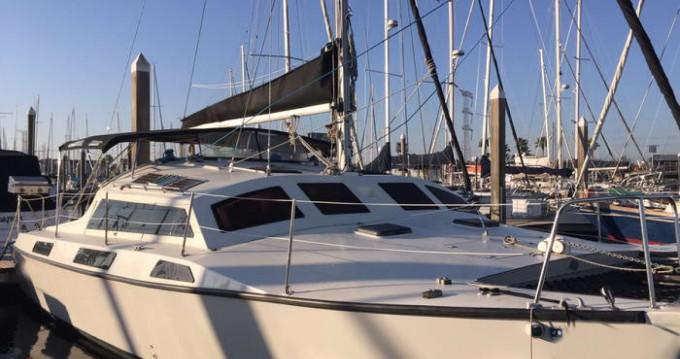 Catamaran for rent Altea at the best price