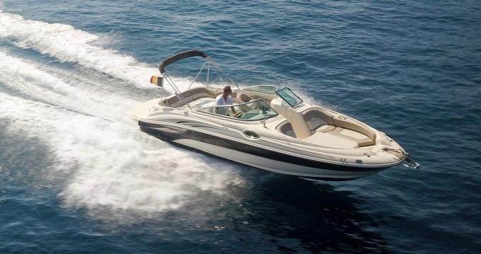 Rental Motorboat in Mandelieu-la-Napoule - Sea Ray Sea Ray 240 Sundeck