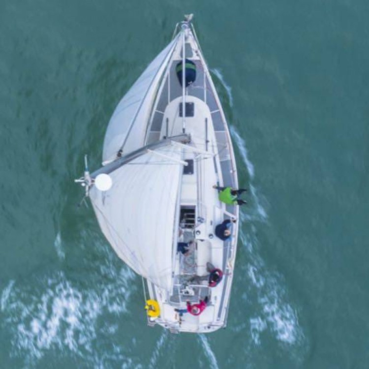 Hire Sailboat with or without skipper Dehler Benicarló