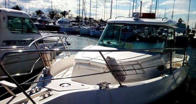 Boat rental Faeton 730 MORAGA in Maliaño on Samboat