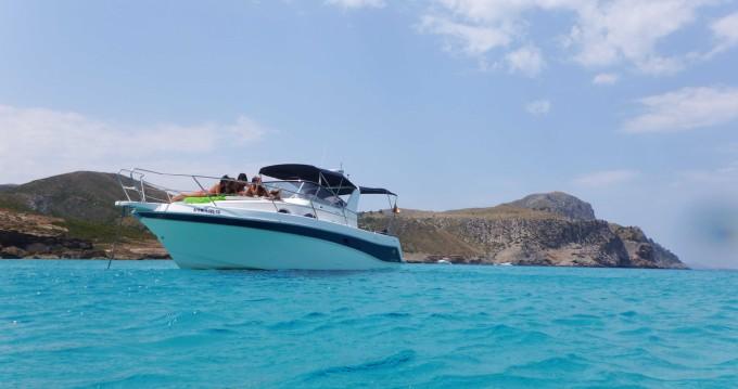 Rental yacht Ciutadella de Menorca - Faeton Faeton 980 Sport on SamBoat