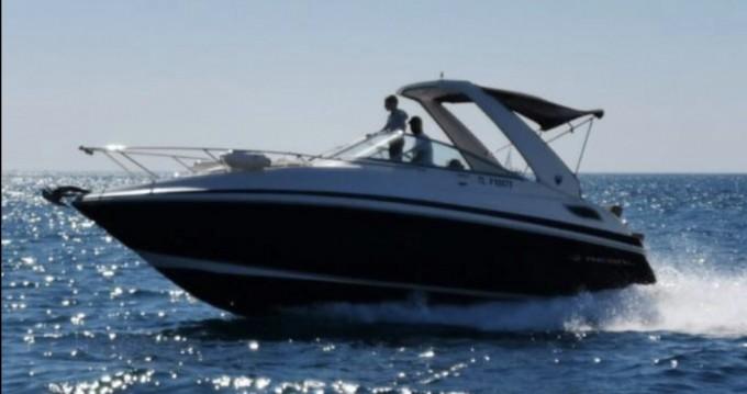 Boat rental Mandelieu-la-Napoule cheap Regal 28 Express