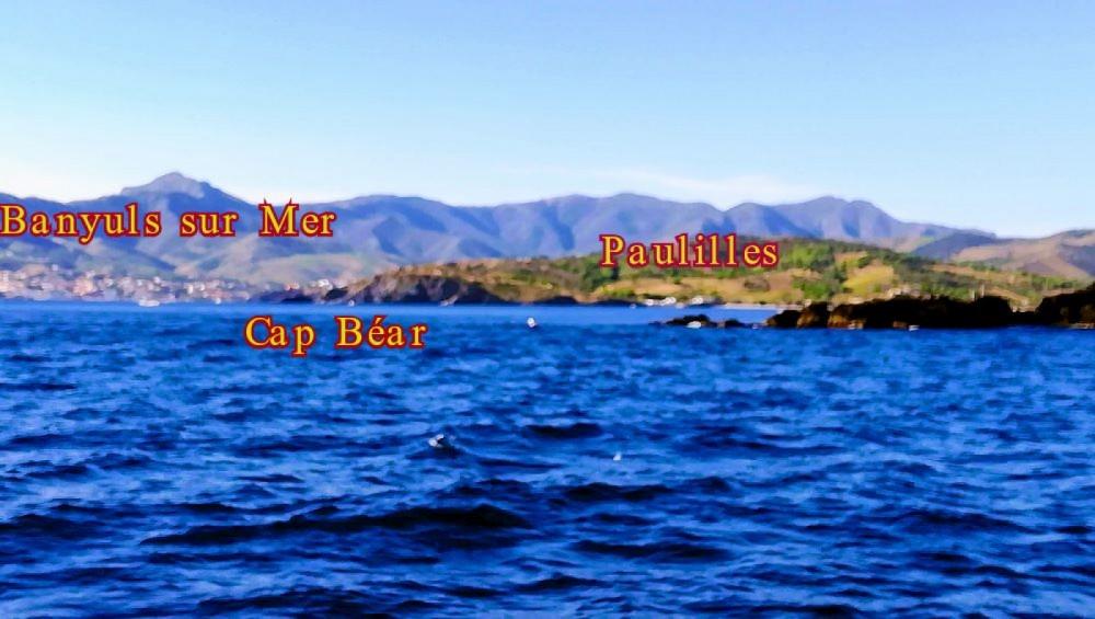 Rental Motor boat in Argelès-sur-Mer - Quicksilver Activ 555 Cabin