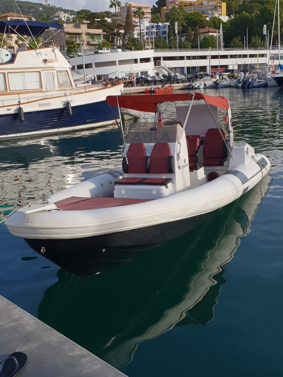Hire RIB with or without skipper AVILA TUONO Palma