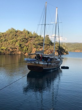 Rental Sailboat Custom Made with a permit