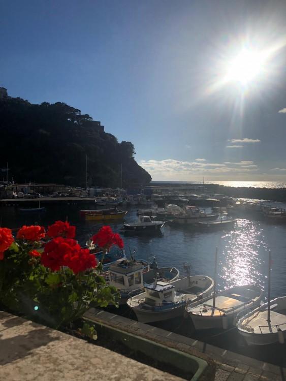 Boat rental Apreamare Apreamare 9 in Positano on Samboat