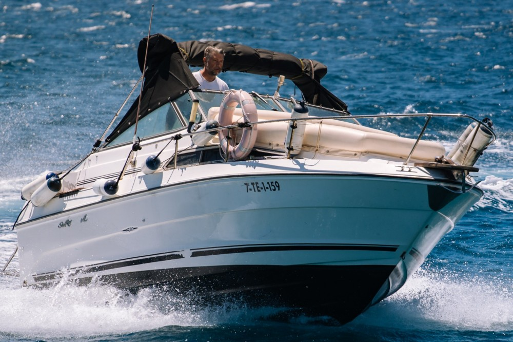 Boat rental Arona cheap Sea Ray 230