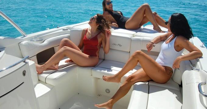 Rental Motorboat in Ibiza Island - Sea Ray Sea Ray 270 SLX BAD